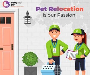Pet Relocation made