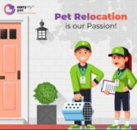 Pet Relocation is our passion