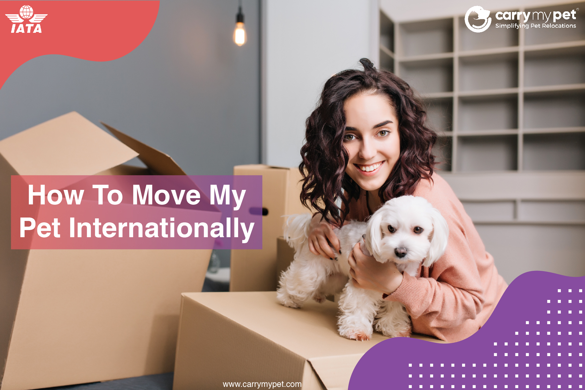 How to Deliver Pets Internationally