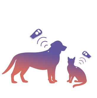 Pet Microchipping for Pet Relocation