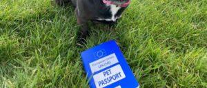 2 pet-passport