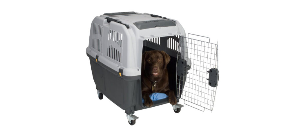 4-iata-approved-crate
